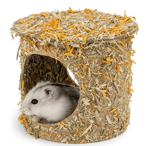 Composable Hamster Tunnel Hideout