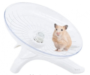 What Exercise Equipment is Best for the Hamster