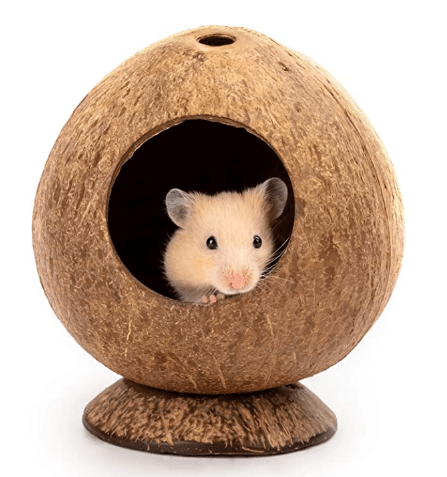 Andwe Coconut Hut Hamster House Bed